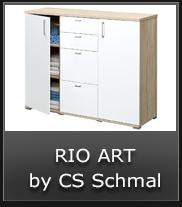 Rio Art